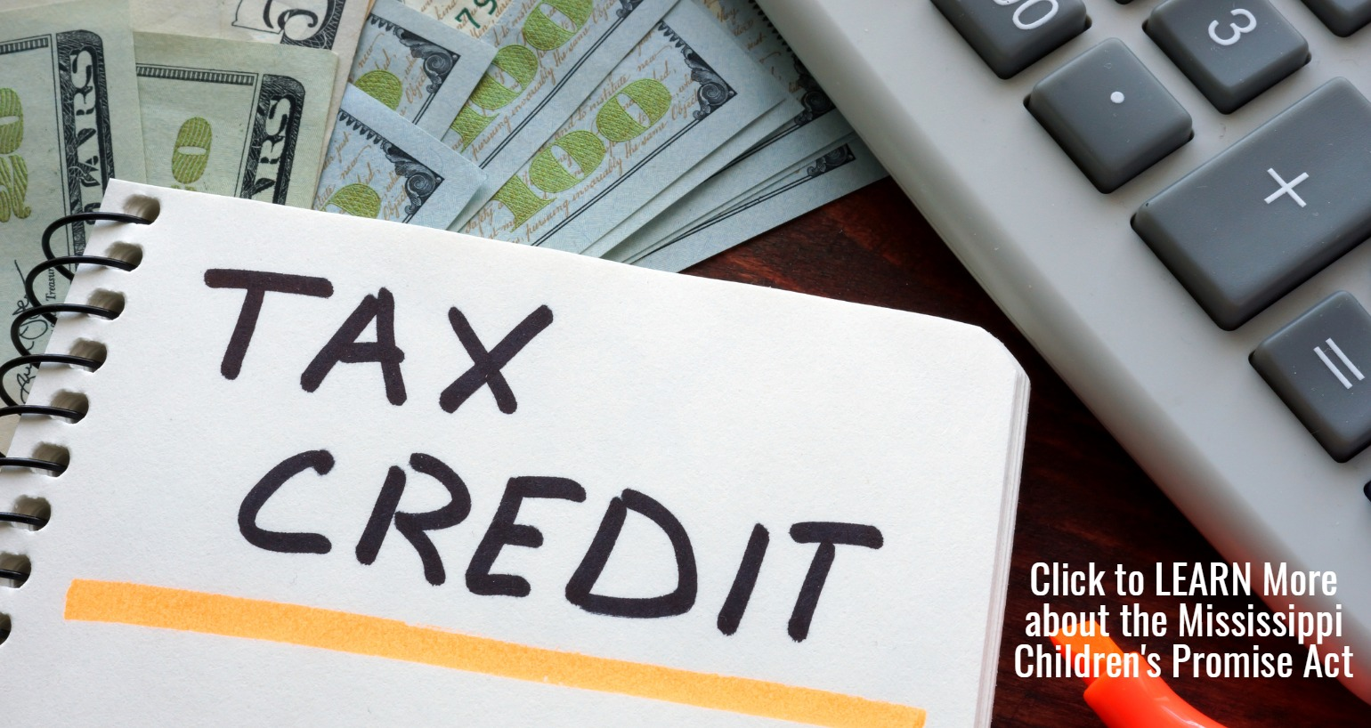 Children's Promise Act Tax Credit